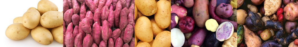 Potatoes For Gain Weight